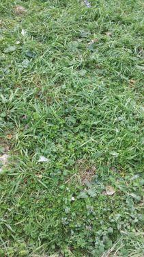Kartal Soğanlıkta % 50 kat Karşılığı Cadde Üzeri Arsa No:199