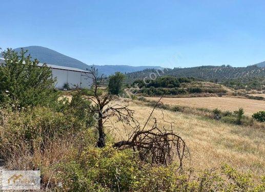 Kafaca'da Satılık 3.500 m2 Ticari İmarlı Arsa