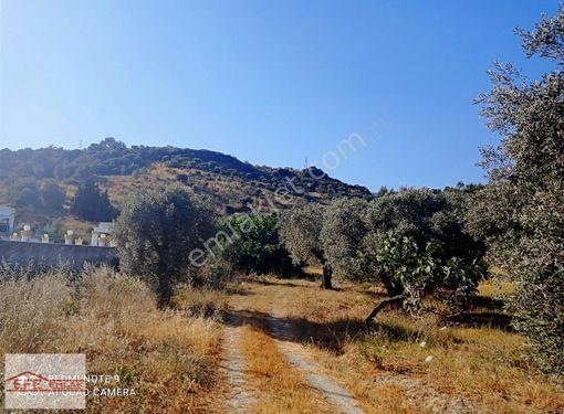 Efe Emlak'tan Kuşadası Yolu Üzerinde Muhteşem Arsa