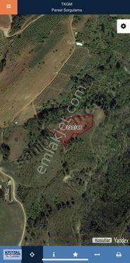 Kestel Aksu Köyünde 3800m2 Yatırımlık Fırsat Arazi