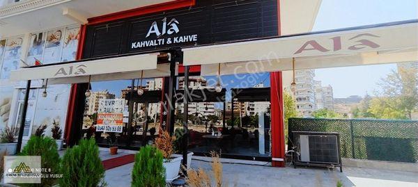 AKPİYARDA CADDE ÜSTÜ DEVREN KİRALIK CAFE