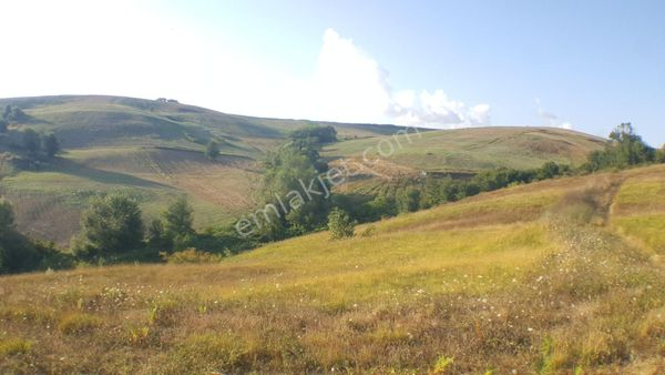 DERİNCE KAŞIKÇI MAHALLE'sinde RESMİ YOLLU ARSA /LAND FOR SALE