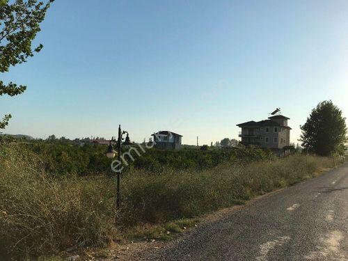 Dalaman Çınar Arkasında 7472 m2 Tarla