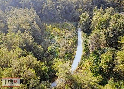Ağaçlı Köyü.......