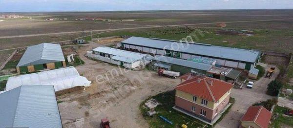 Satılık Konya Kulu da çiftlik